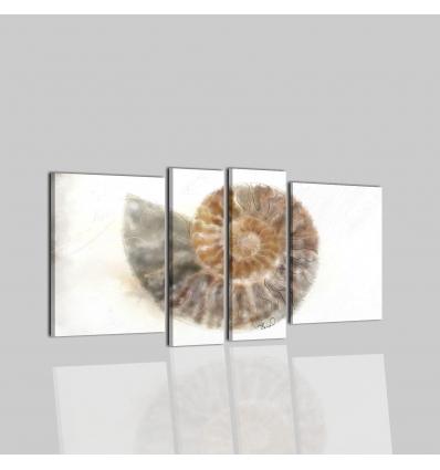 FOSSIL - Dipinti a mano con fossile su sfondo bianco