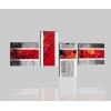 RAMSEI - Pinturas modernas para la decoración roja gris
