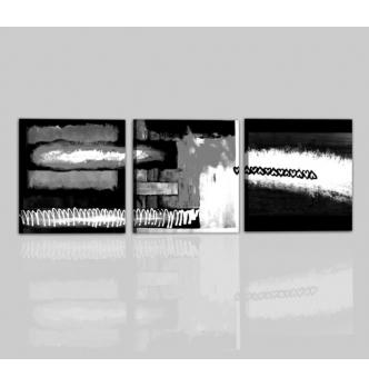 NAIDE - Cuadros modernos tripticos blanco y negro