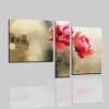 Cuadros modernos con flores - LAVRID