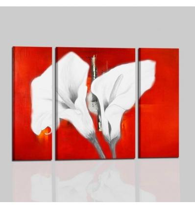 quadri con fiori -  Calle
