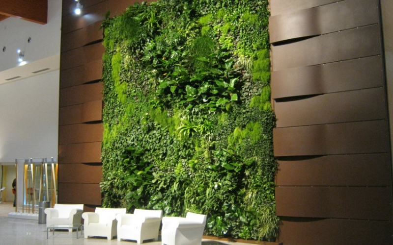 Pareti Verdi Foto: Le facciate verdi climagrün possiedono numerosi vantaggi economici.